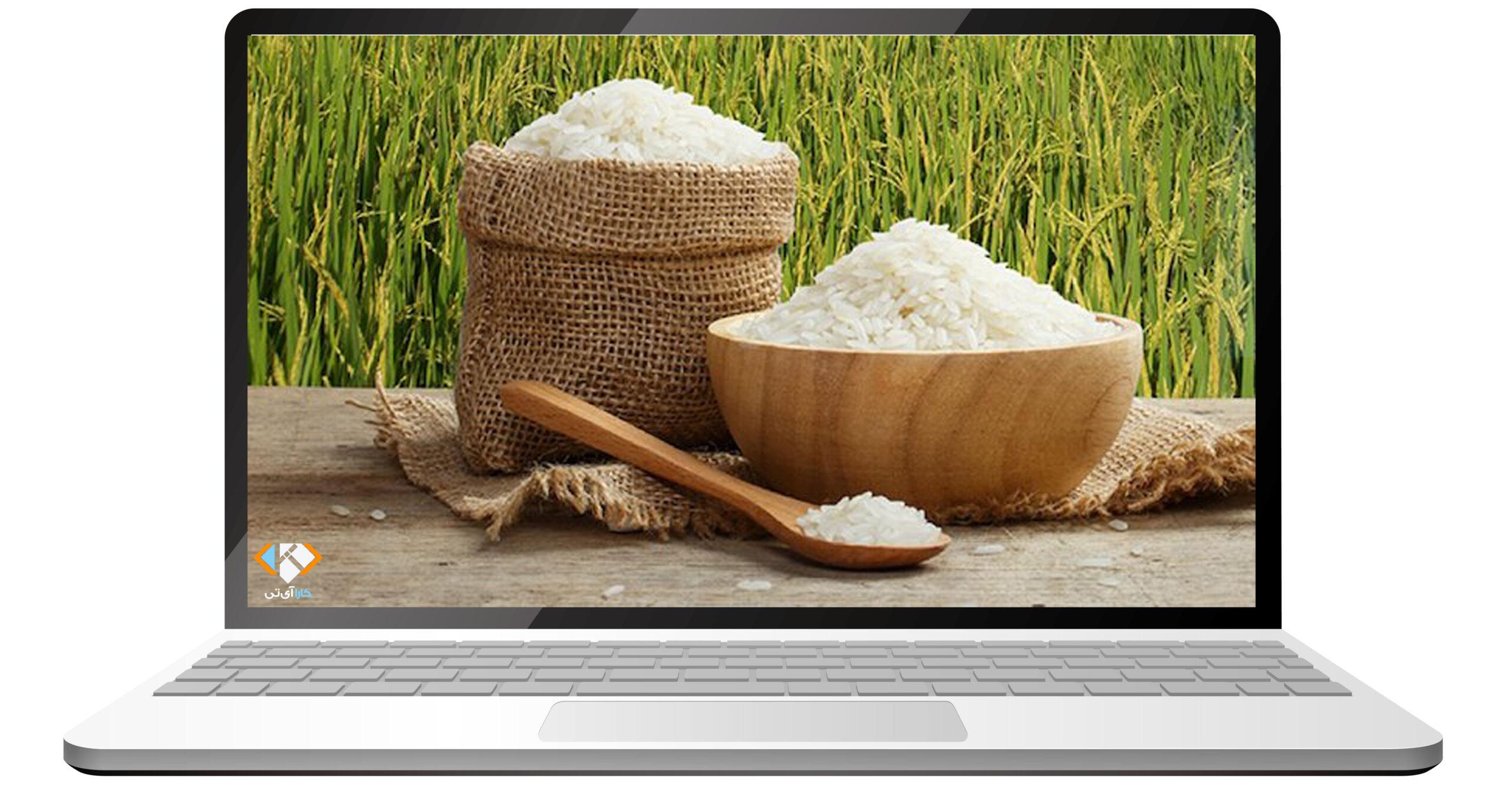 طراحی سایت فروش برنج