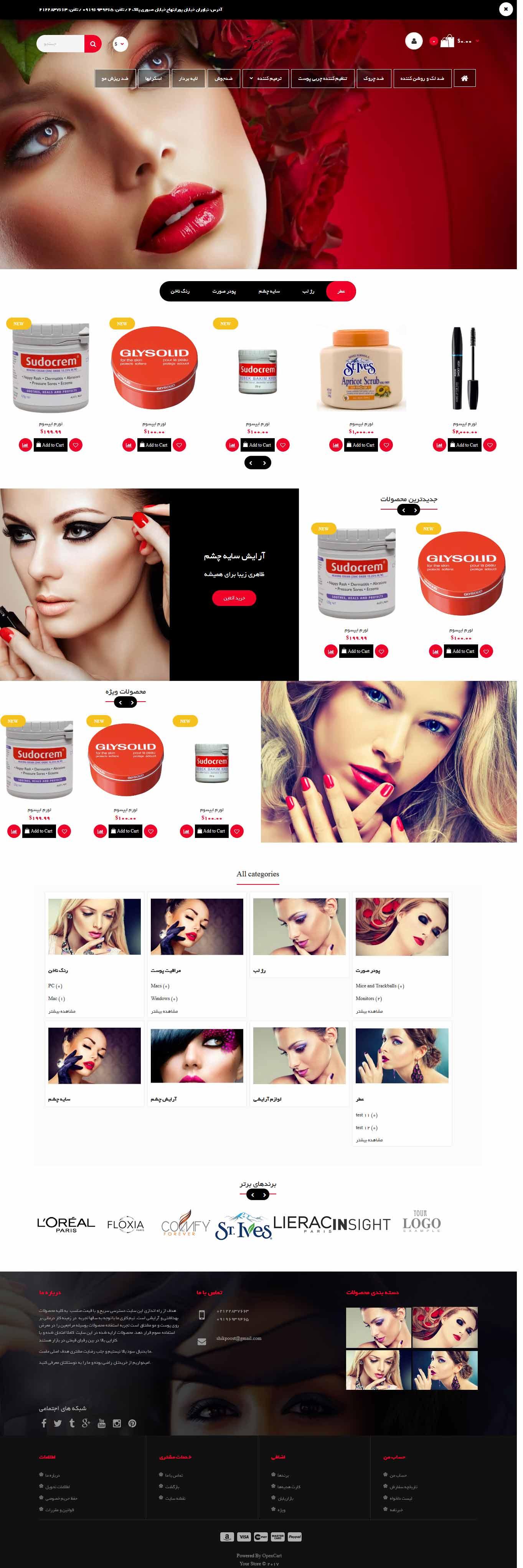 طراحی سایت فروشگاه اینترنتی شیک پوست