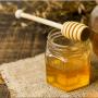 طراحی سایت عسل